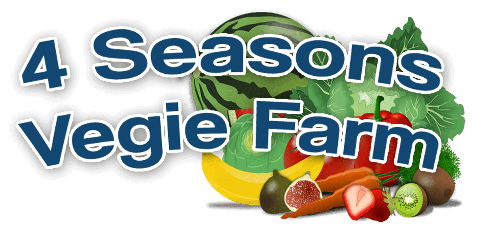 4 Seasons Vegie Farm